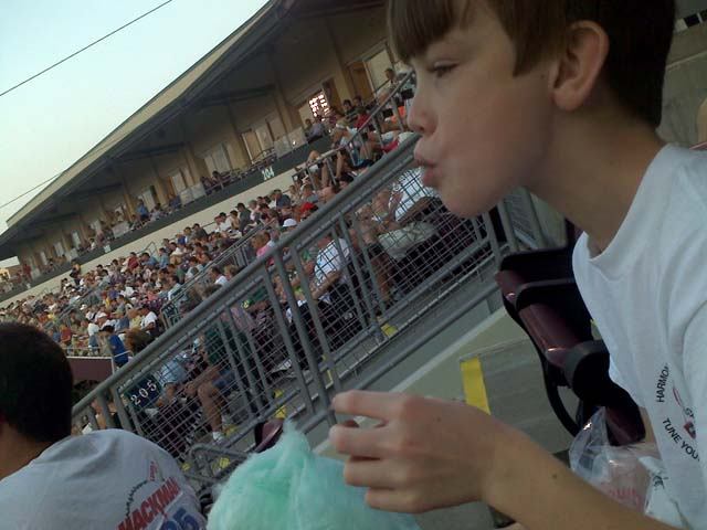 Monkey Carl eating green cotton candy